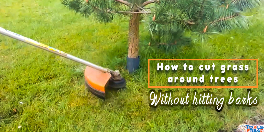 How to cut grass around trees without hitting barks