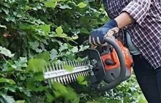 Petrol vs Electric Hedge Trimmer