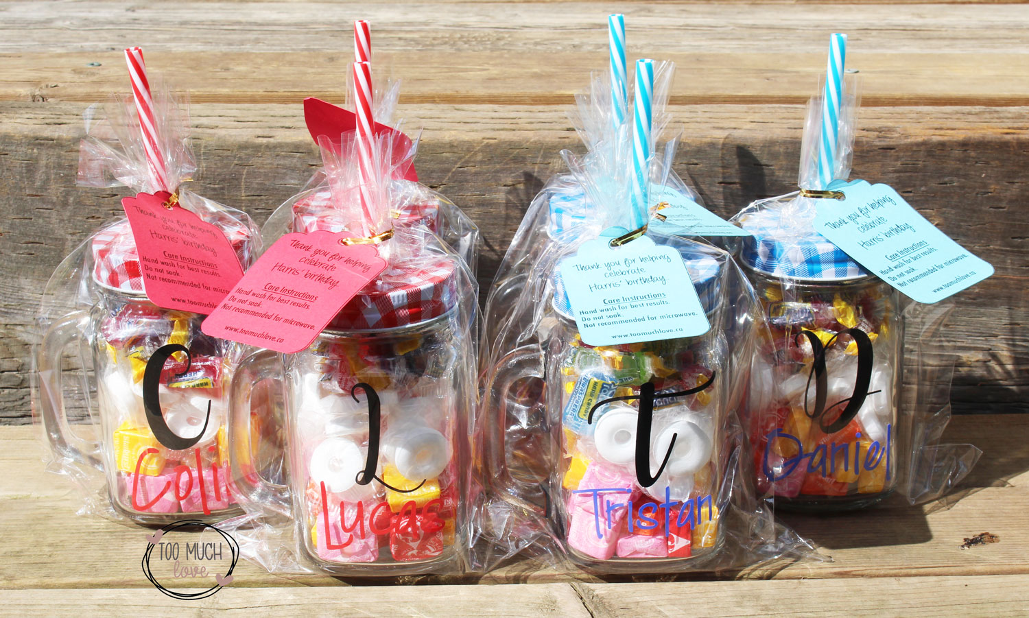 Easy To Make Mason Jar Party Favors Using Your Cricut Too Much Love