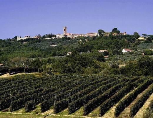 Montecarlo near Lucca