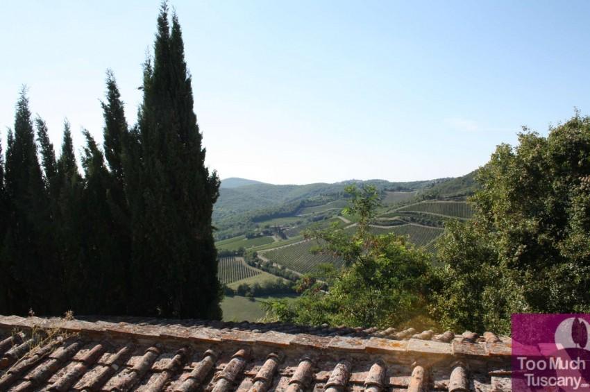 View from Vertine