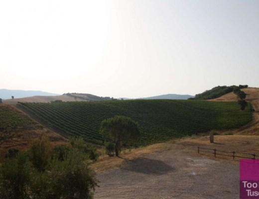 View from Gli Albori
