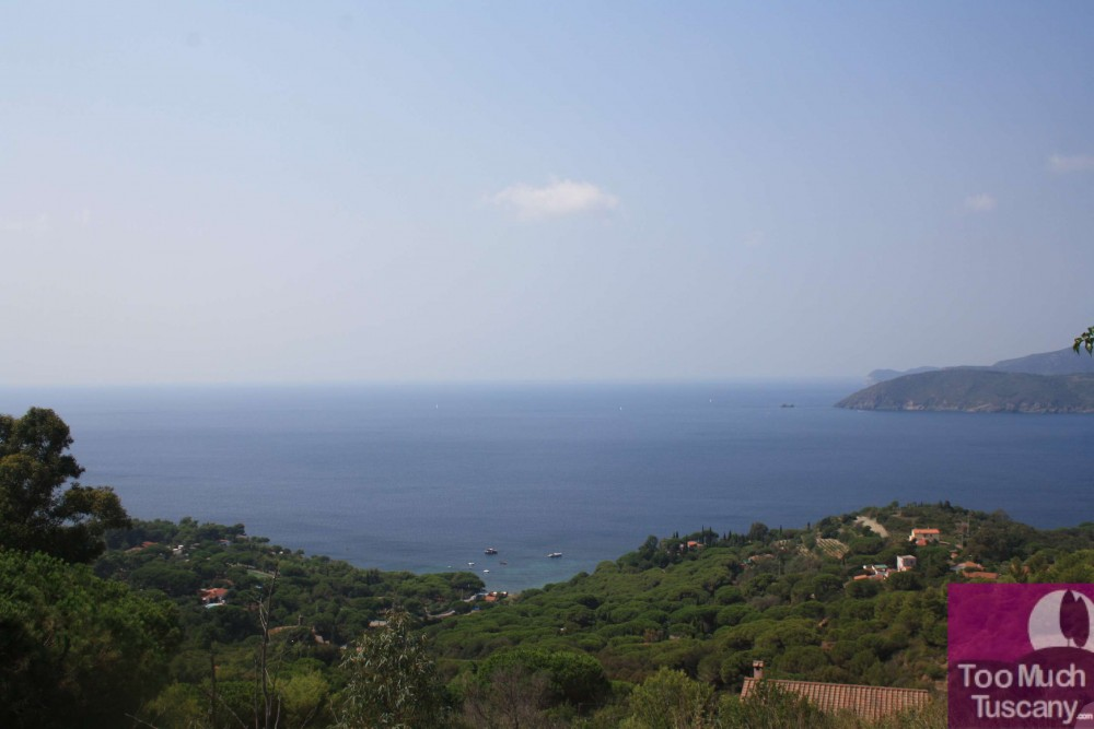 View from Capoliveri