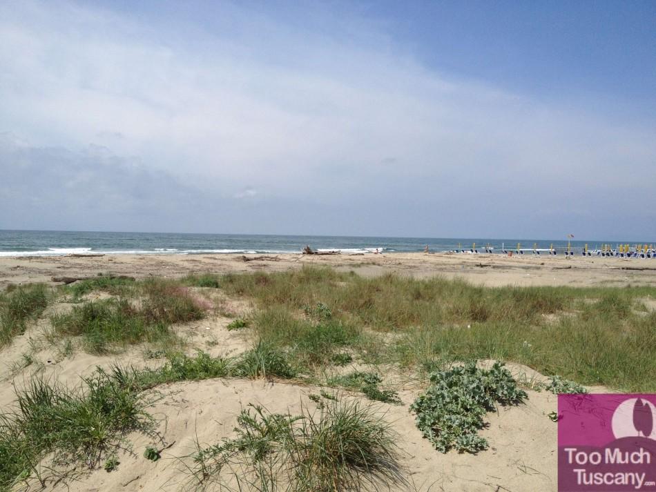 Viareggio, free beach