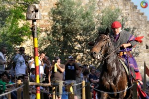 Medieval Jouster at Fiera delle Messi