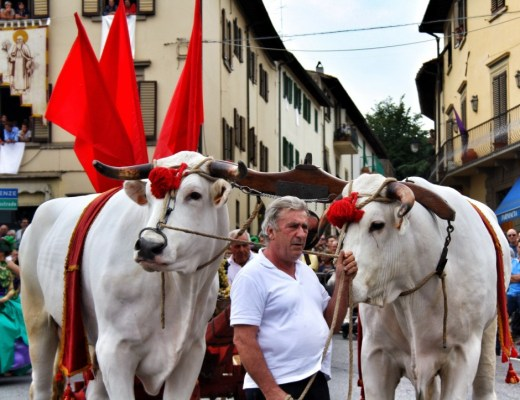 September events in Tuscany