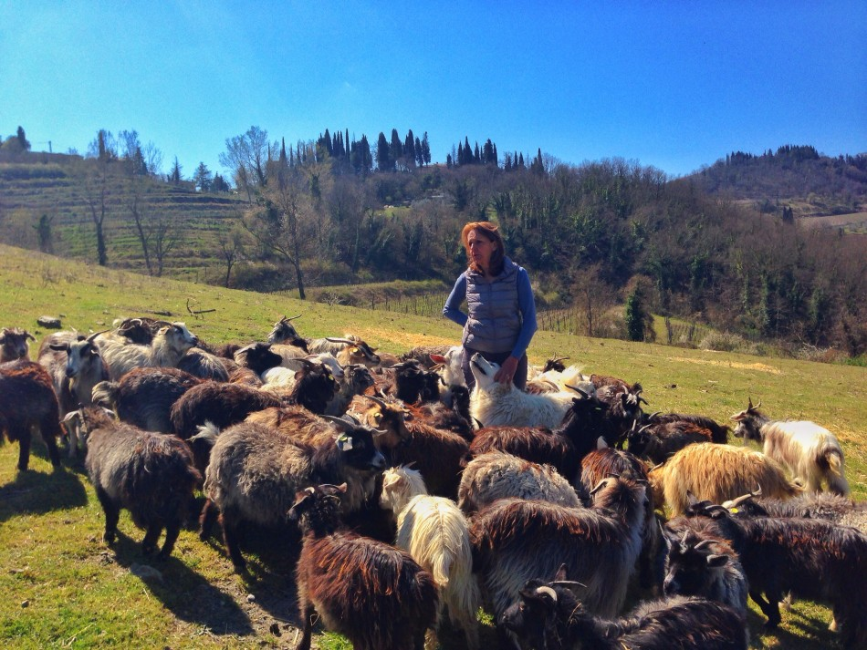 Nora and her cashmere goats
