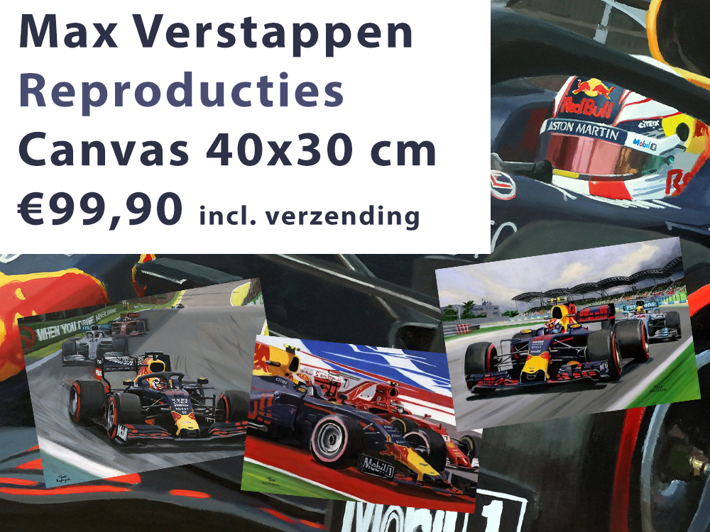 Max Verstappen canvas