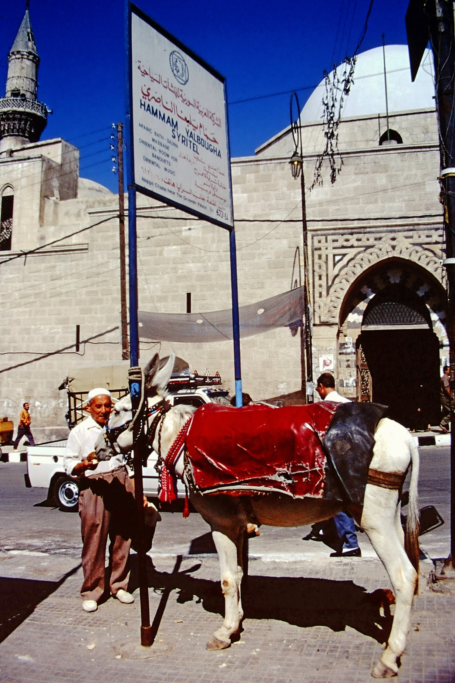 Man with donkey on a city street
