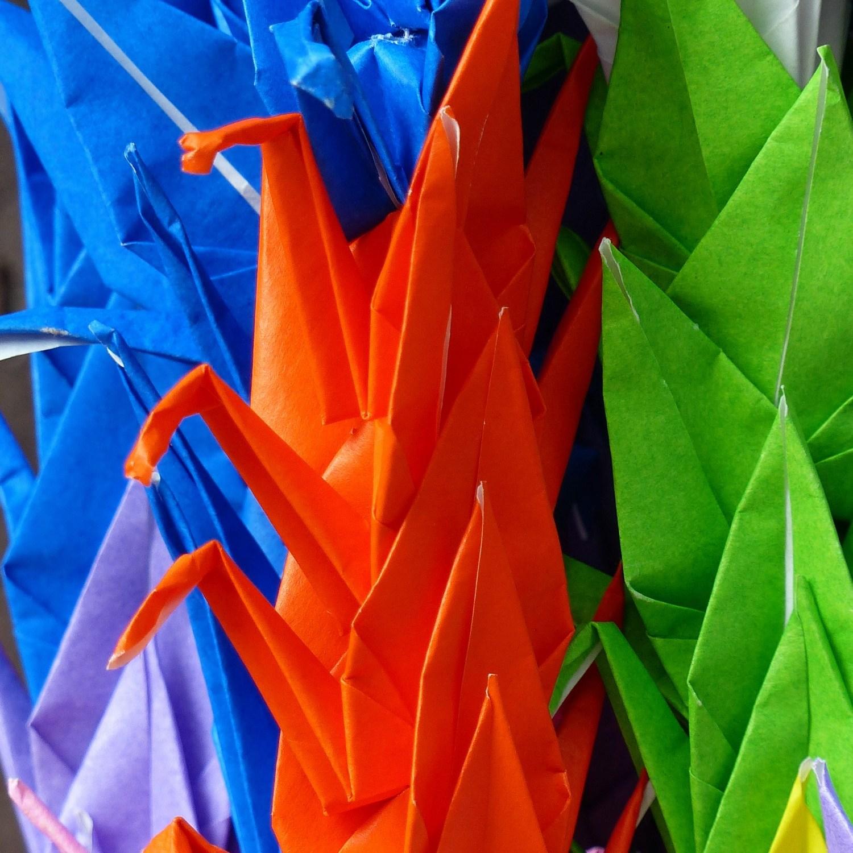 Colourful paper cranes