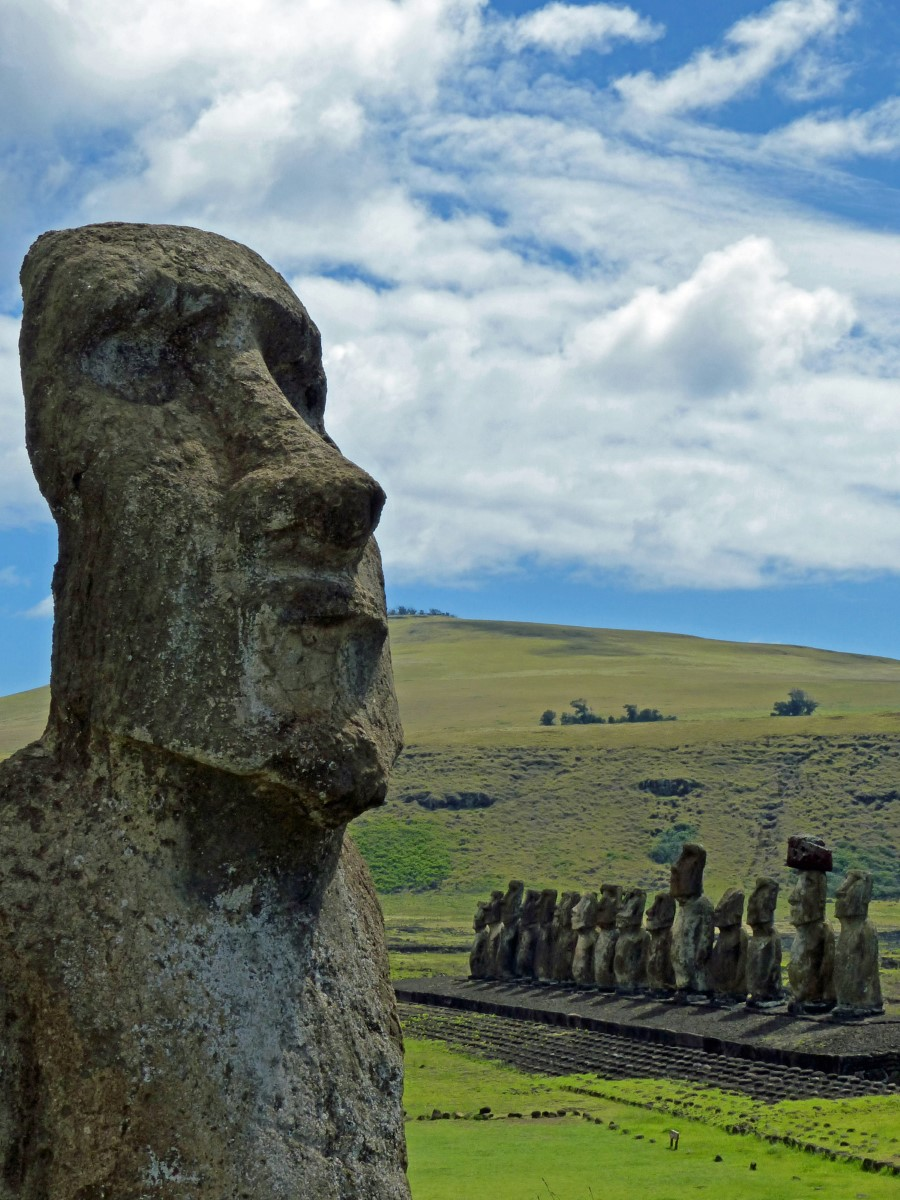 Large moai with row of more behind