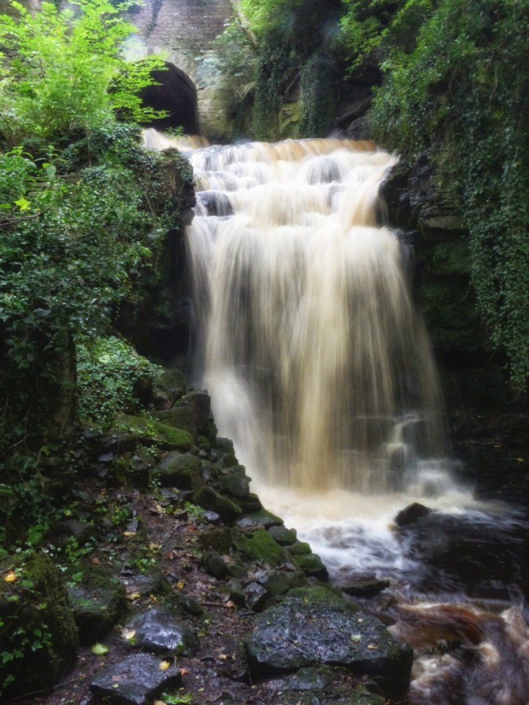 Waterfall in a wood