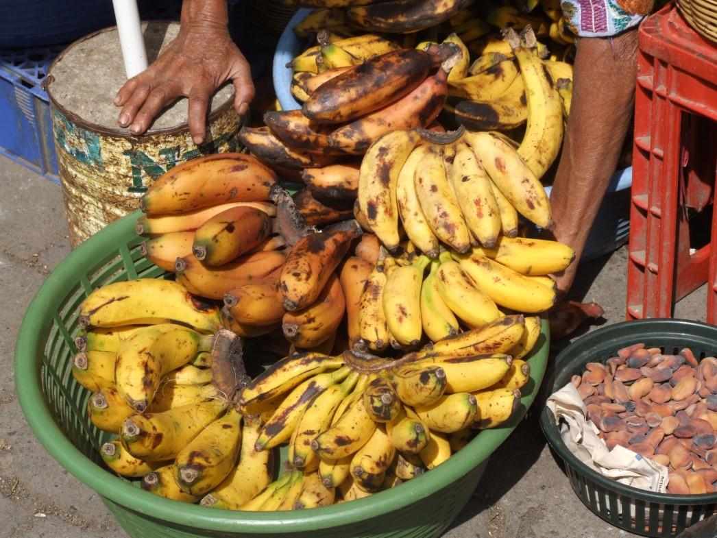 Small bananas for sale