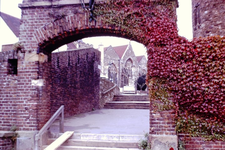 Brick arch covered with red creeper