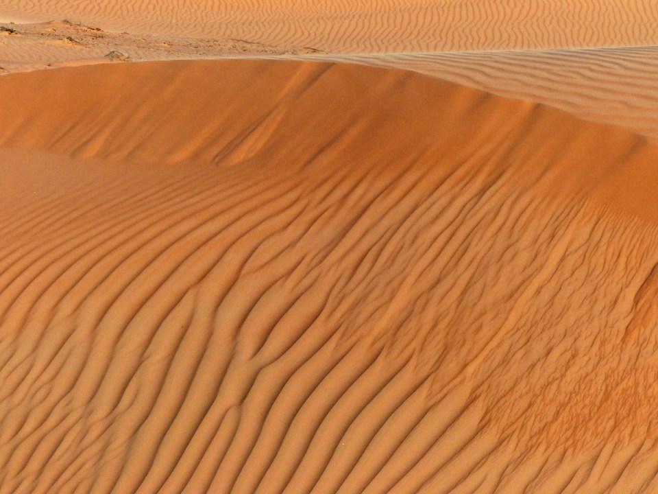 Ridges on a sand dune