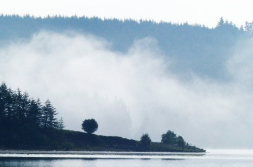 Mist hanging over a lake
