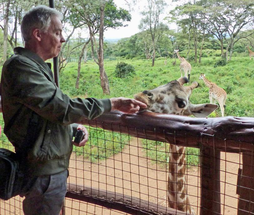 Man feeding a giraffe over a fence
