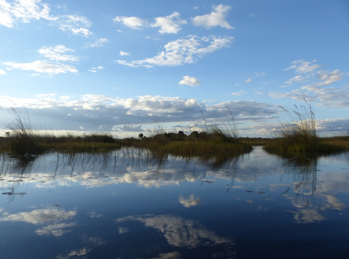 Wetlands with cloud reflections