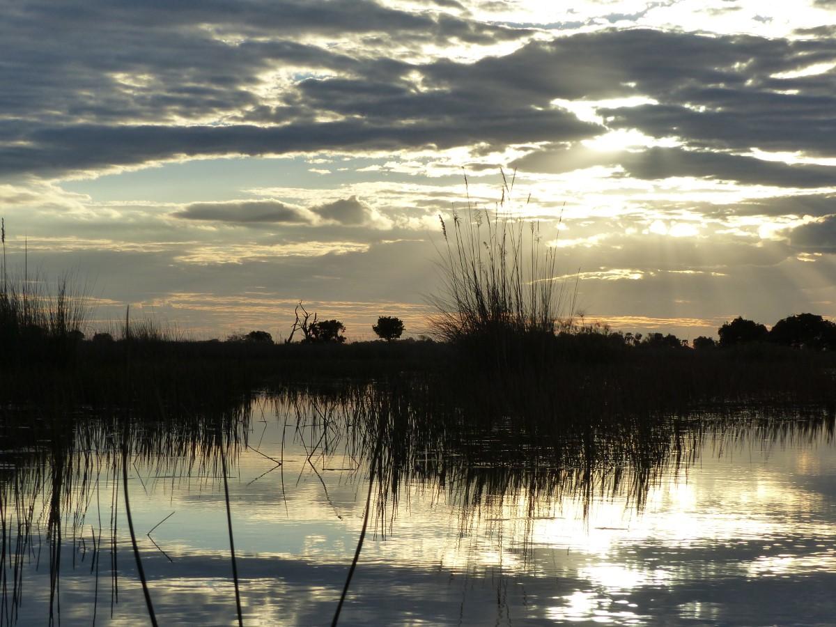 Wetlands in low sun
