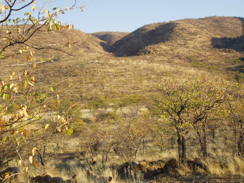 Dry green hills