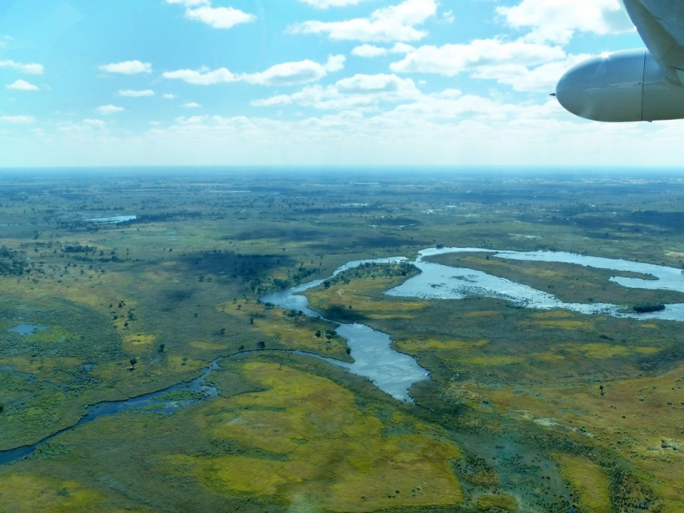View of lush wetlands from a propeller plane