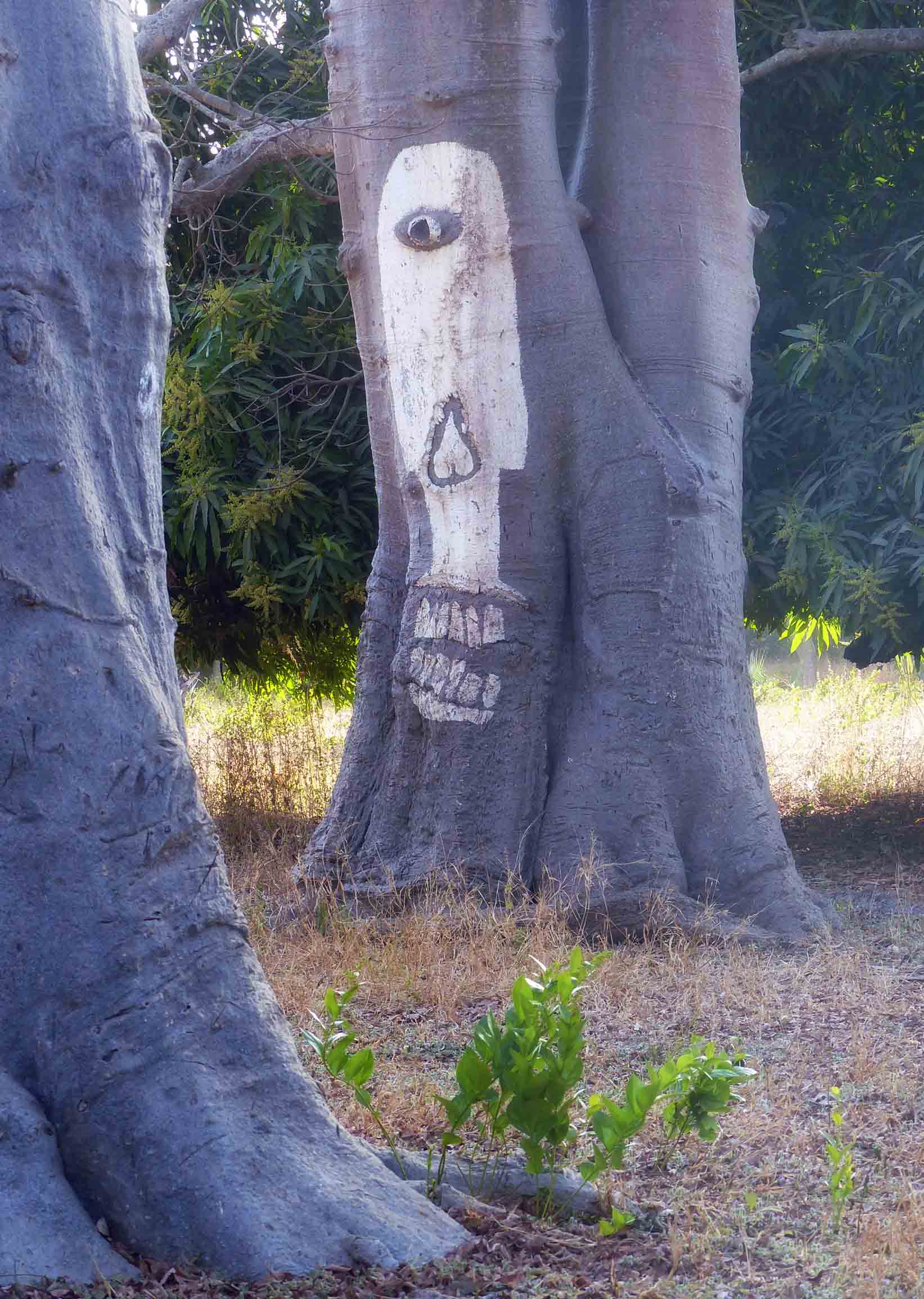 One-eyed white face painted on tree trunk