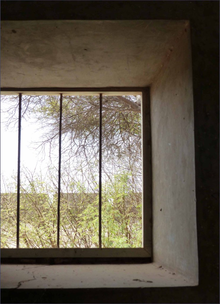 Looking out of a barred window