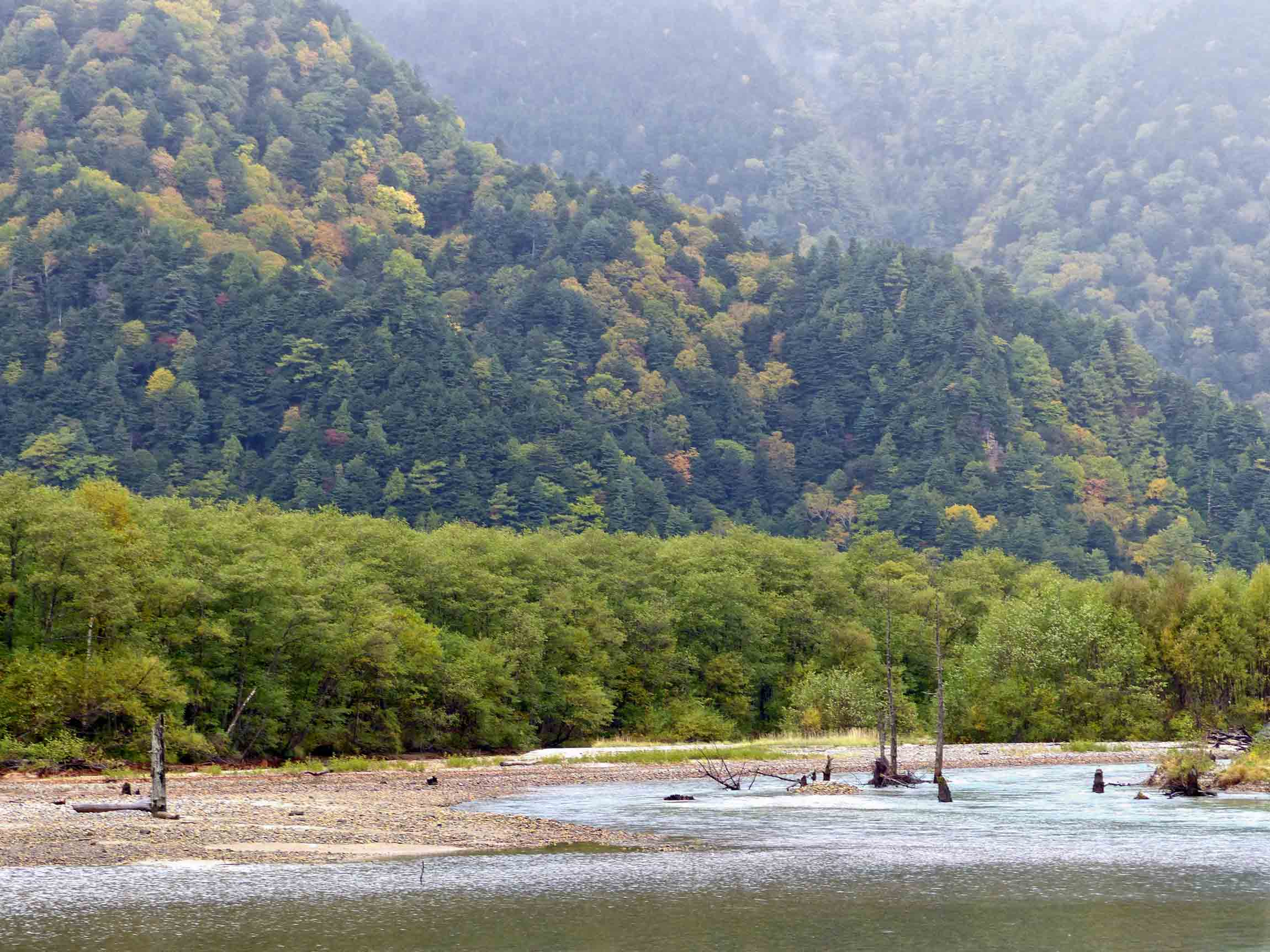 Wooded hillside and river