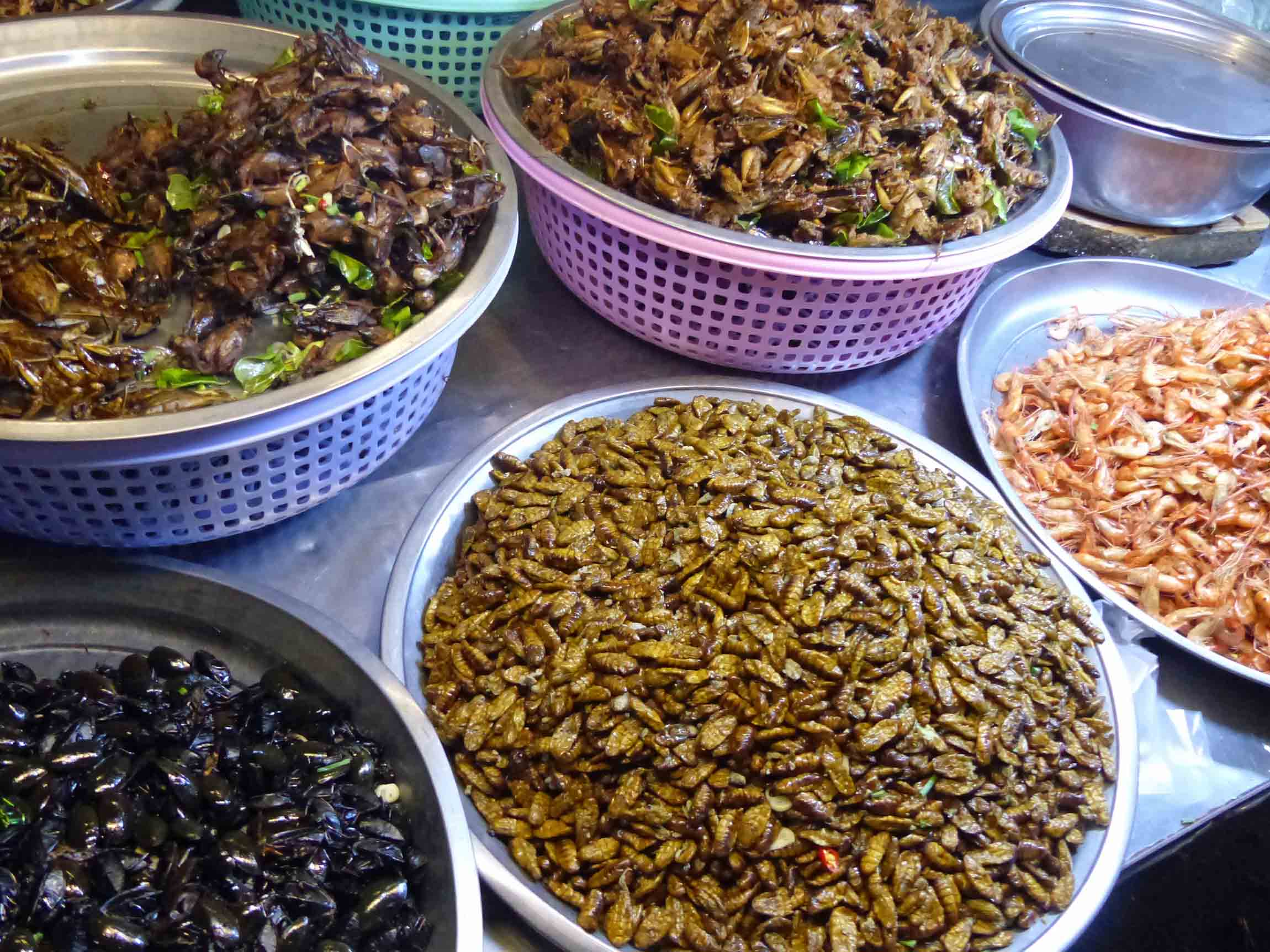 Platters of fried insects