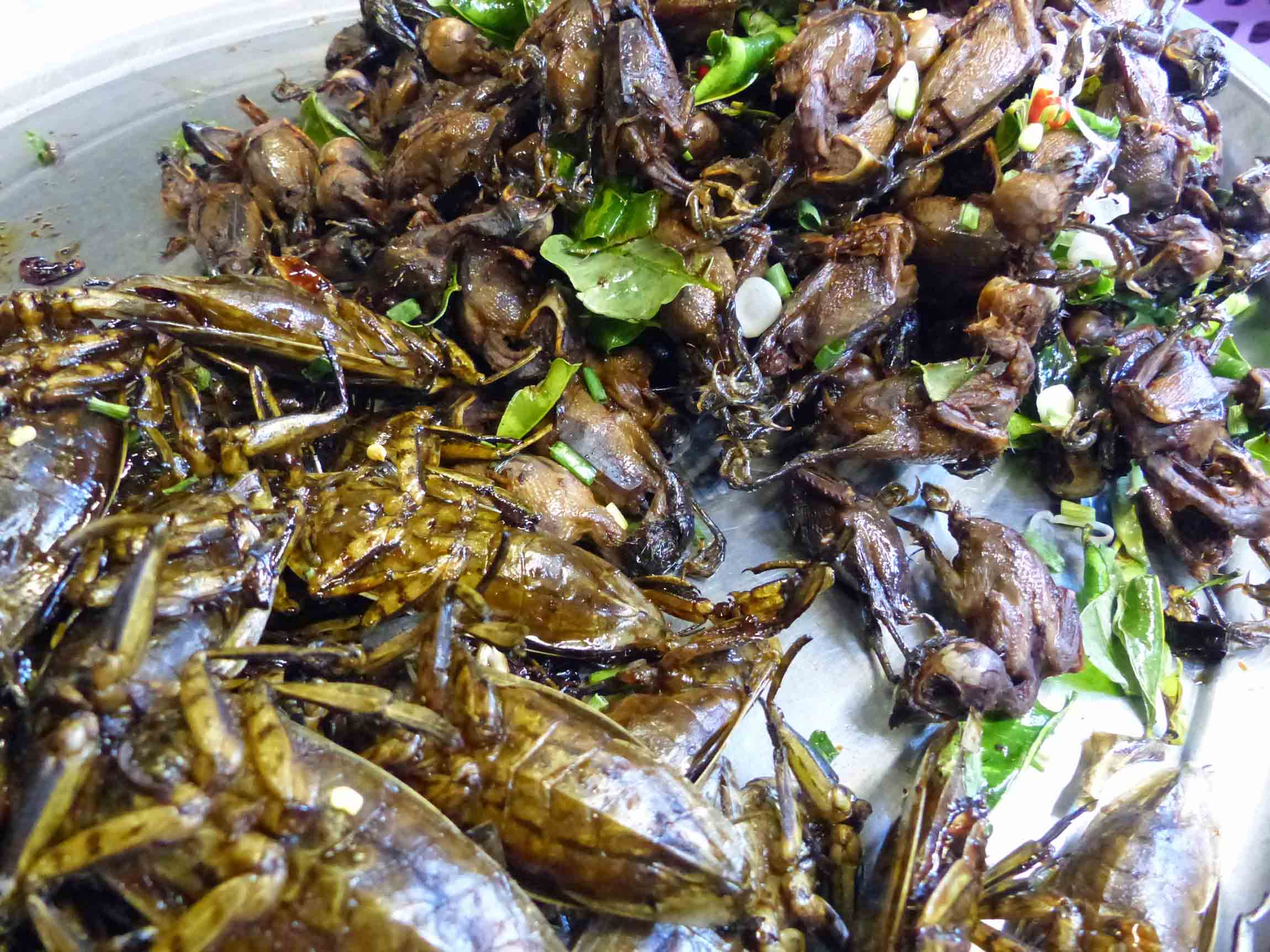 Platter of fried insects