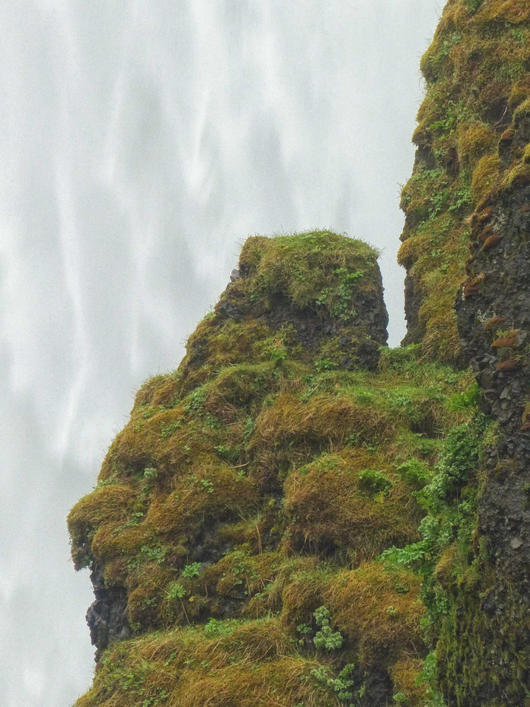 Mossy rocks in front of waterfall