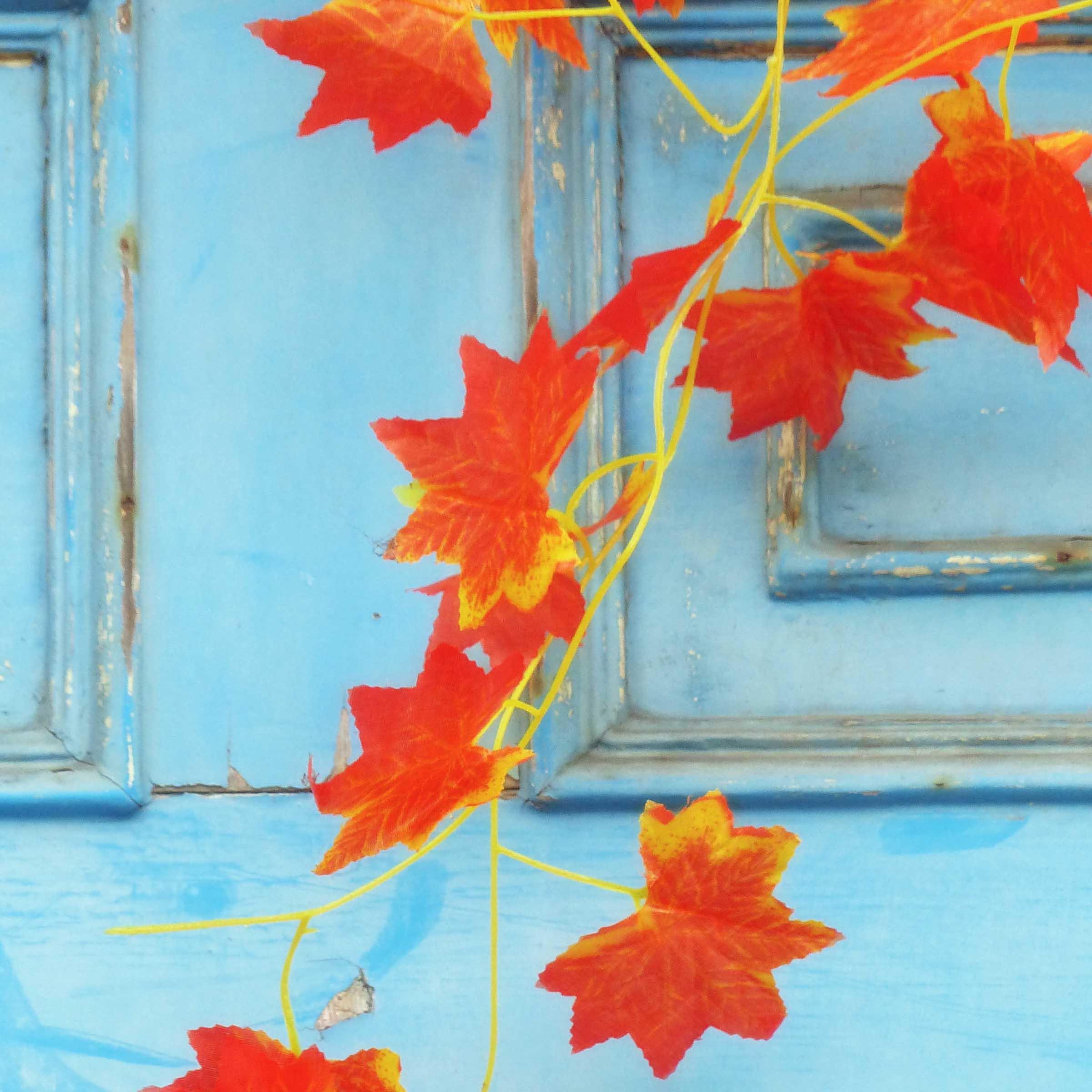 Autumn leaves in front of blue door