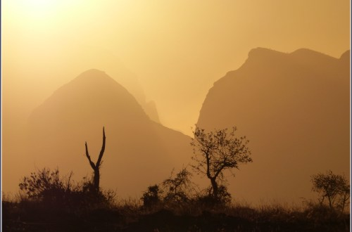 Yellow sunset with mountains and trees