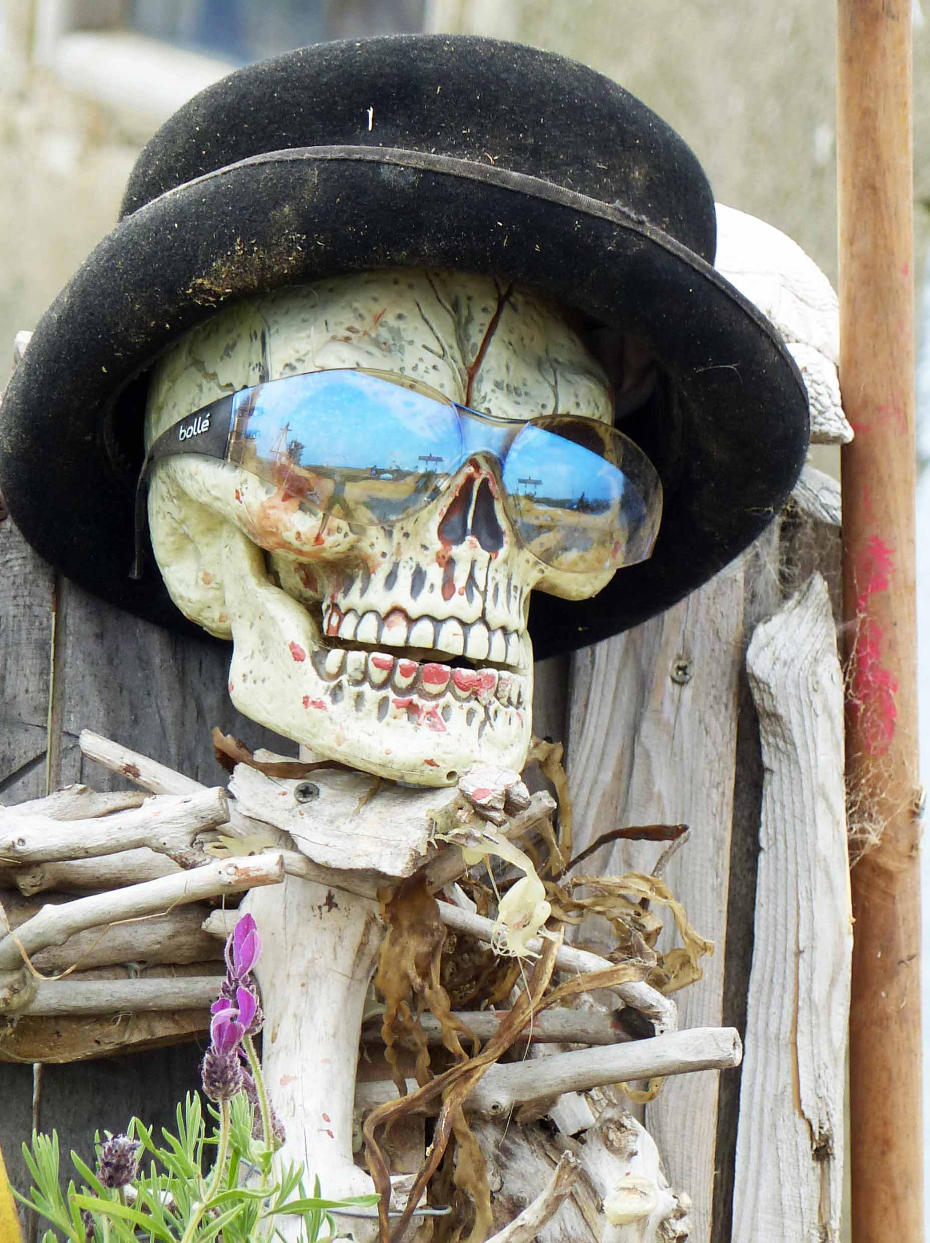 Skeleton wearing hat and sunglasses