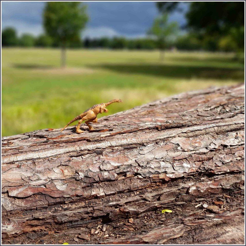 Small plastic dinosaur on a fallen tree trunk