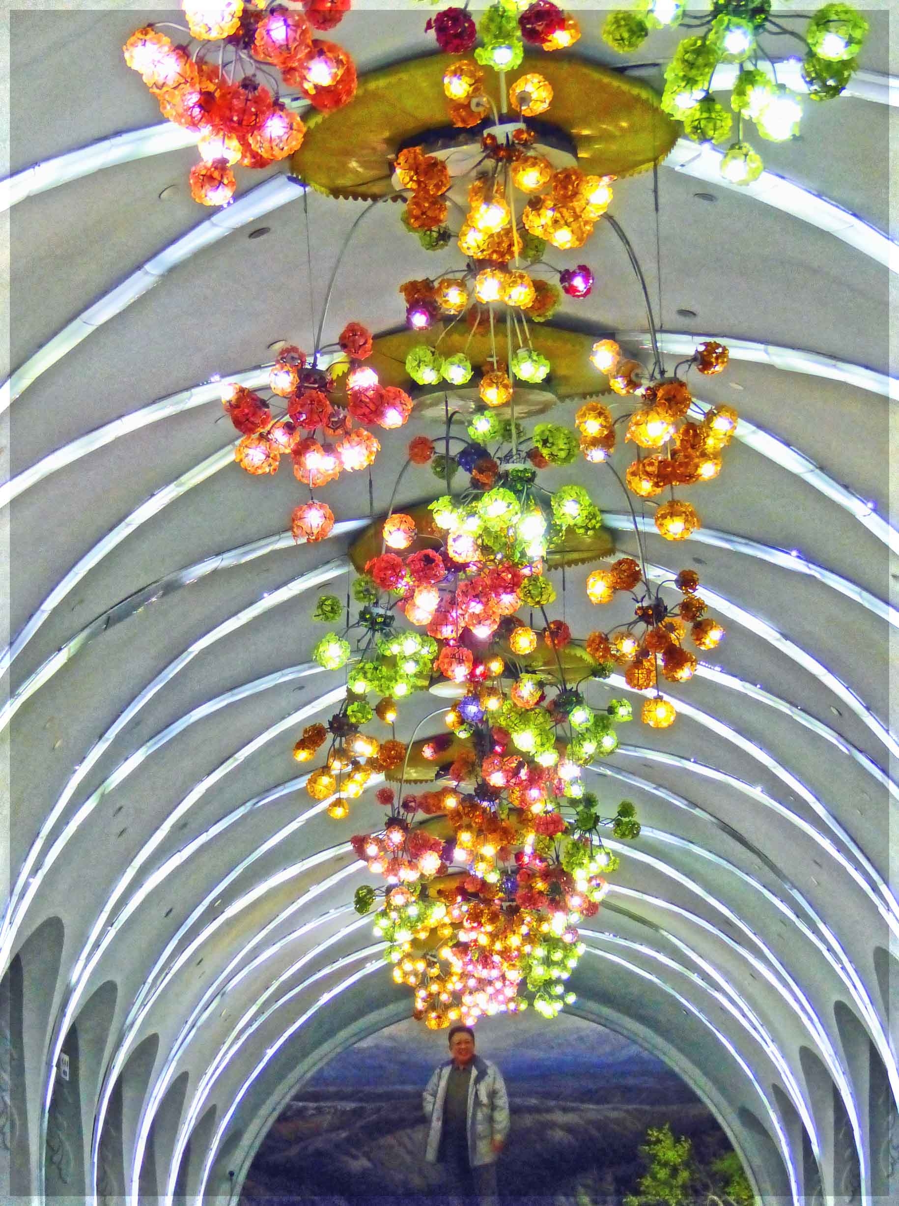 Coloured lights hanging from arched ceiling