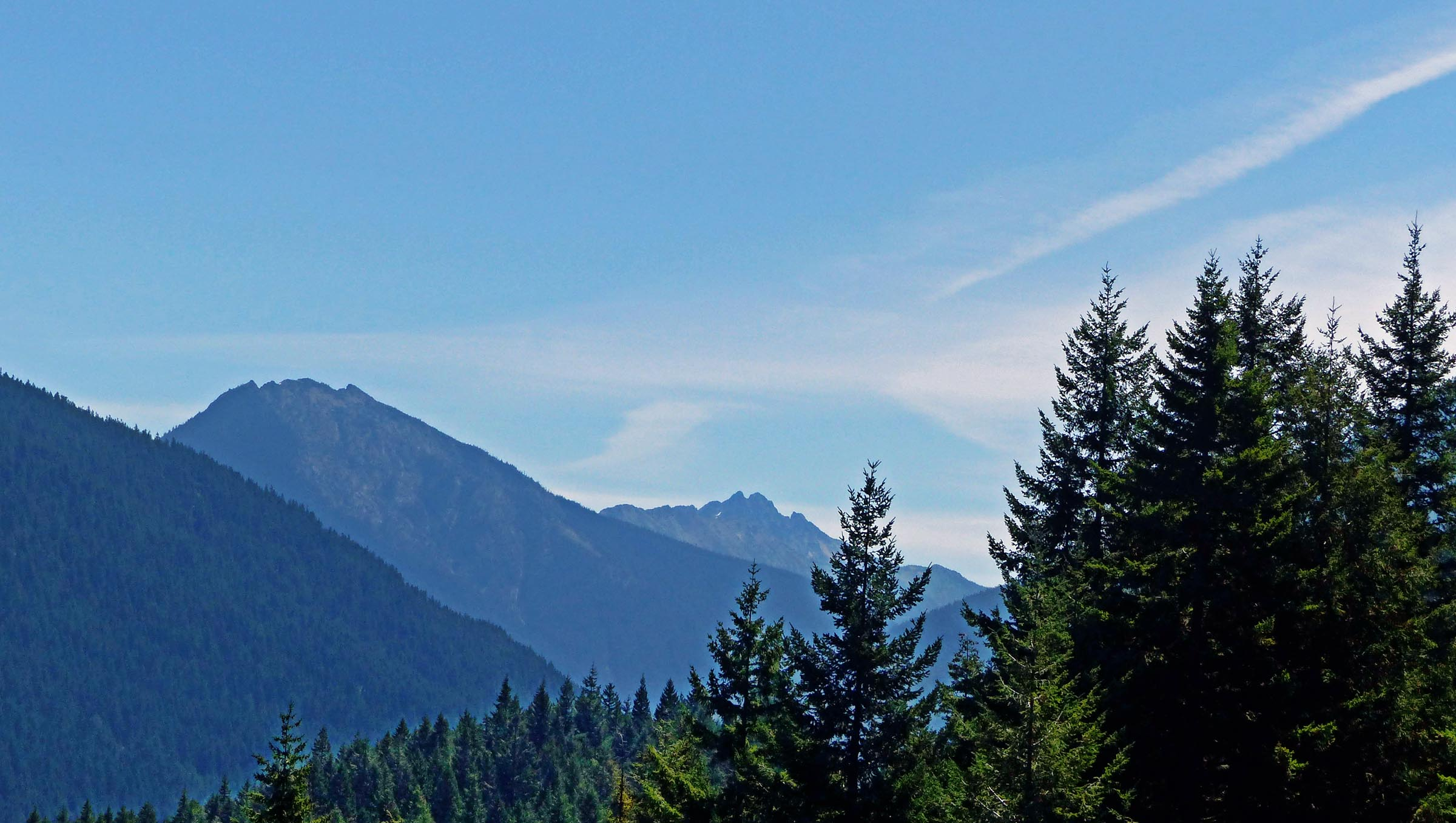 DIstant mountains with conifers in foreground