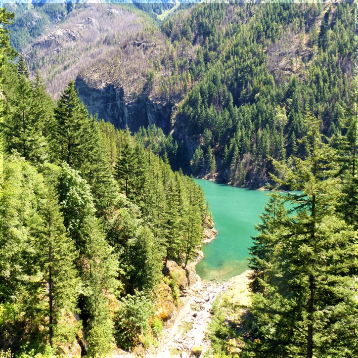 Looking down at a turquoise lake among pine trees