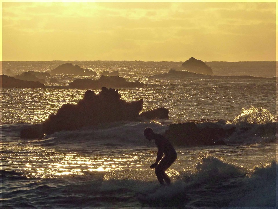 Man surfing in sea with golden light