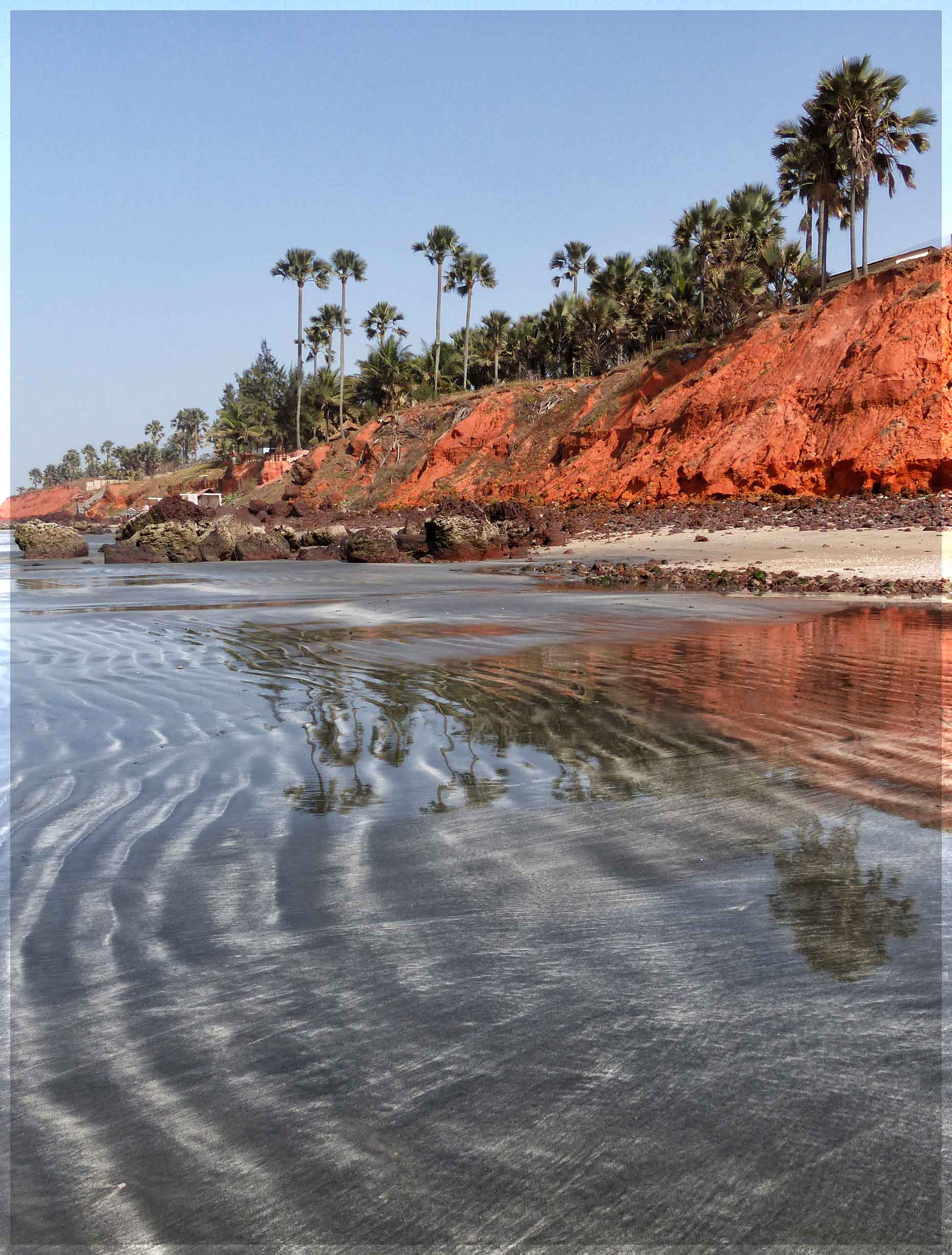 Low red cliffs and palm trees