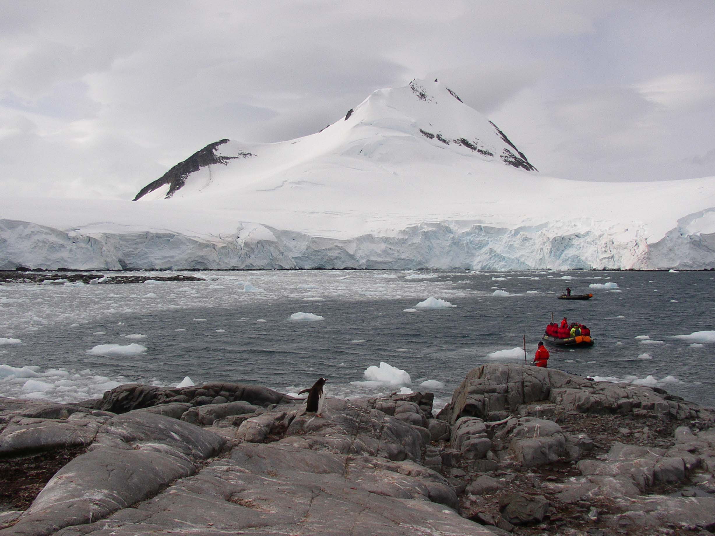 Rocky shore with a penguin, small boats and icebergs beyond