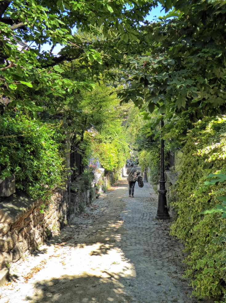 Cobbled path with trees either side