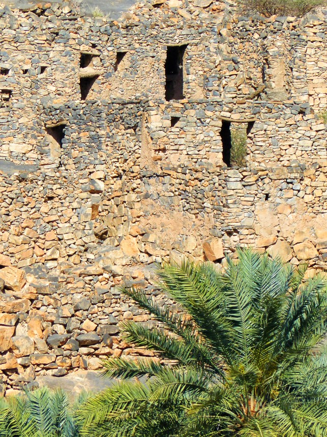 Ruined stone houses and palm tree