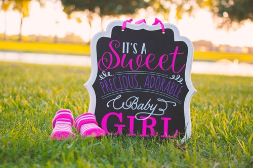 baby meet and greet party sign for a girl