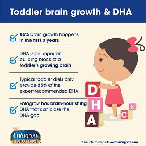 Enfagrow toddler brain building DHA