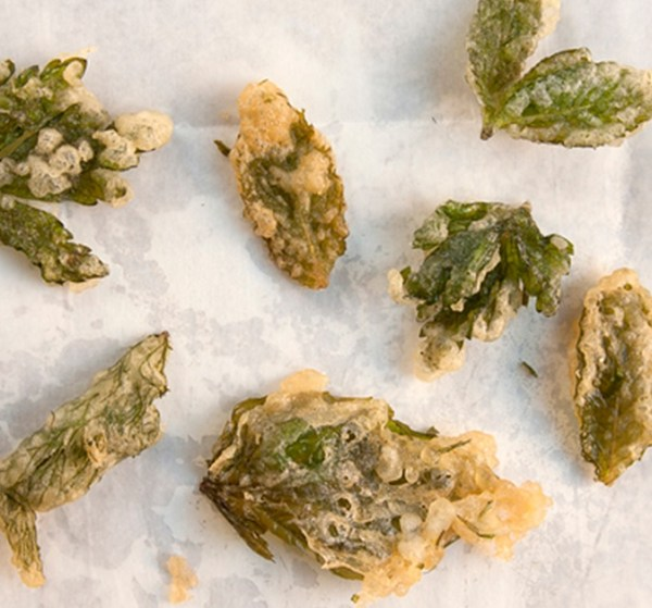 Herb Tempura Recipe