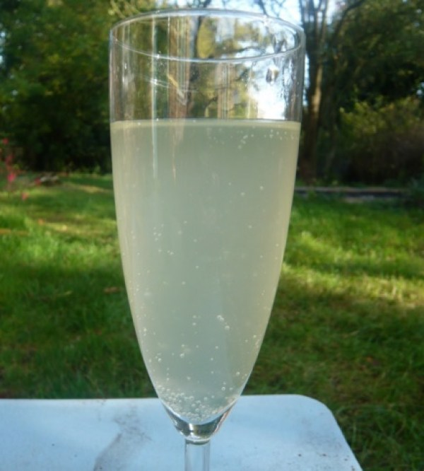 Homemade Gooseberry Champagne