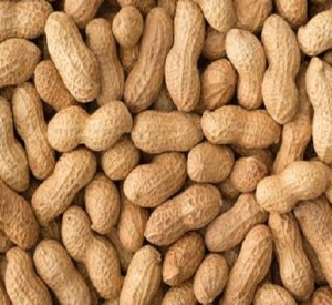 Ten Amazing Facts About Peanuts You Won't Believe Are Real