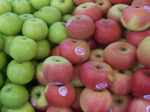 Ten Amazing Facts About Apples You Won't Believe Are Real