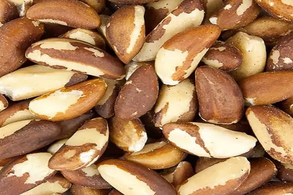 Is Brazil nuts Known to Reduce the Risk of Cancer?